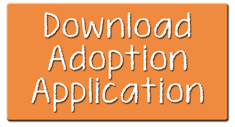Download-Adoption-App-Icon